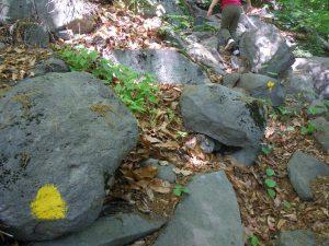 湯村山 黄色い 印 石