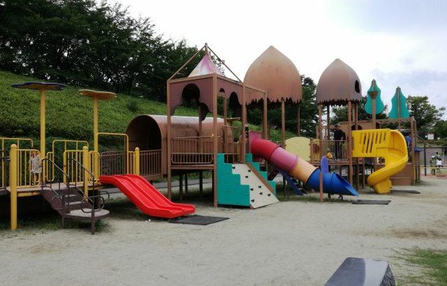 曽根丘陵公園の大型遊具