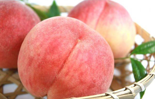 桃 山梨 フルーツ
