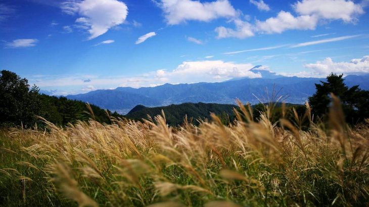 帯名山 山頂 富士山