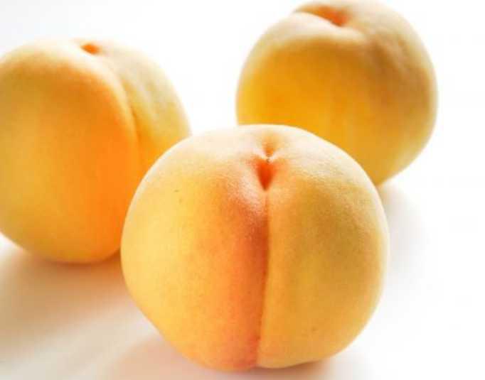 9月が旬・山梨の黄金桃♪皮がピンクの黄金桃もある!?味や買える場所を紹介