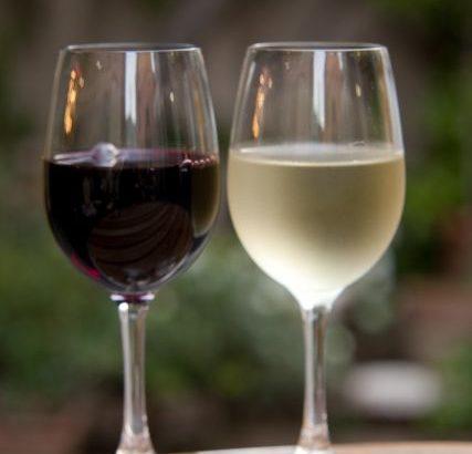 おみやげ ワイン おもしろい