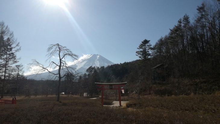 山梨 富士山 しのびの里
