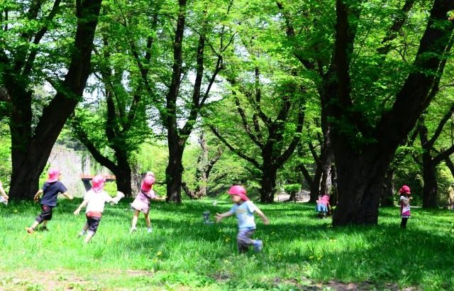 山梨 幼稚園 保育園