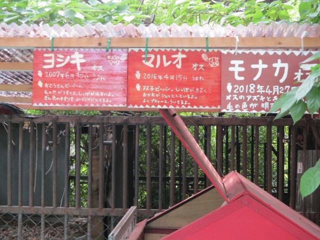 遊亀動物園 甲府市 看板 手作り