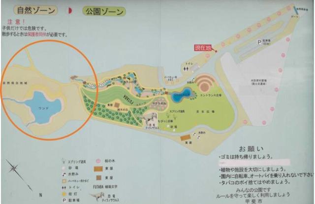 双葉水辺公園の詳細地図