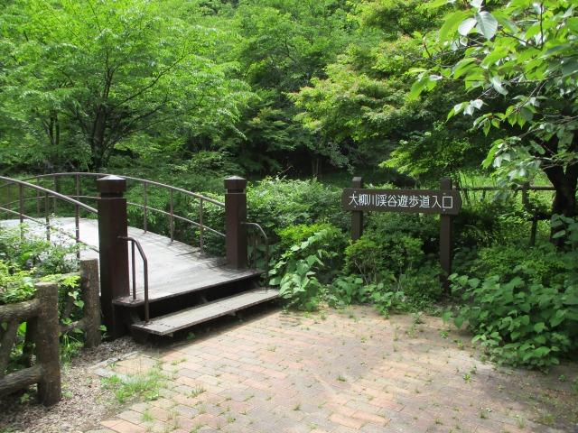 富士川町 ハイキング つり橋