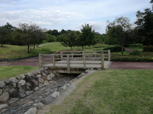 双葉水辺公園の小川と橋