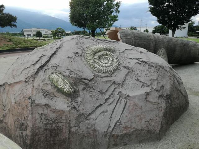双葉水辺公園の遊具は化石がついている