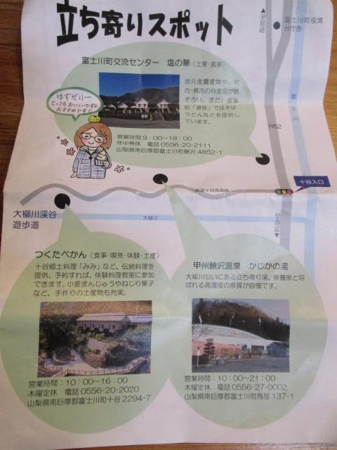 大柳川渓谷 富士川町