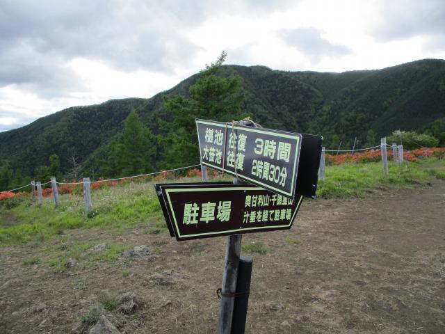 甘利山山頂にある看板に沿って下山する