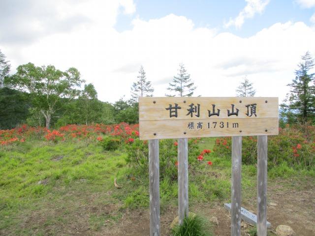 甘利山山頂と書かれた看板が頂上にある