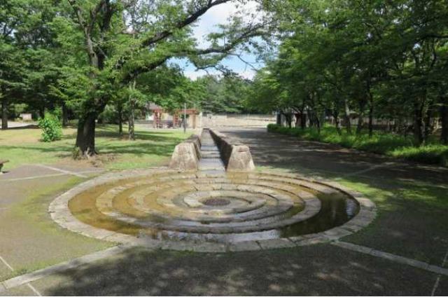 金川の森の水遊びができる場所