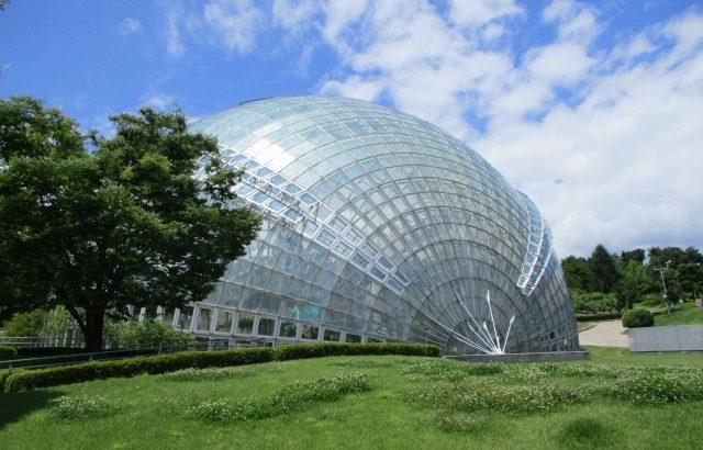 フルーツ公園のアスレチックドーム