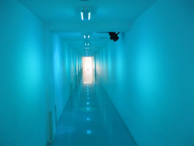 白州名水をイメージしたトンネル廊下