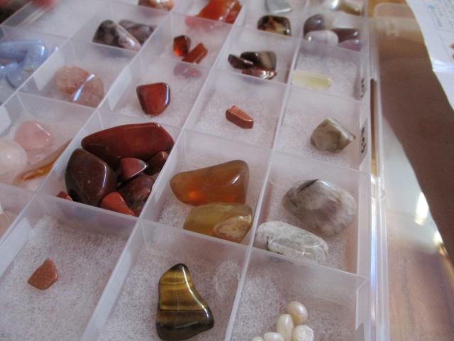 持ち帰った石を種類ごとに標本にした様子