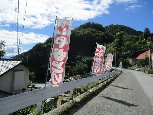 道路に突然旗が立っているやきとり鳥恵