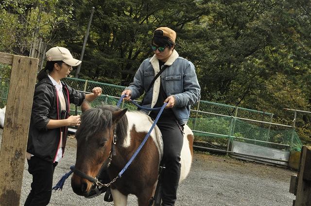 綱で馬を操作する方法をレクチャー中