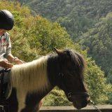 小菅村【うまカフェ】ポニー夢ちゃんに癒されよう♪ブランケット鞍で林道乗馬に挑戦!
