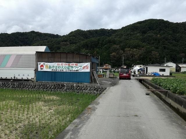あけぼの大豆の西嶋第3会場