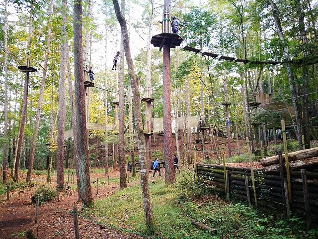【フォレストアドベンチャーこすげ】樹上15mで遊ぼう♪日本唯一の里山ロングジップスライダーもあるよ!