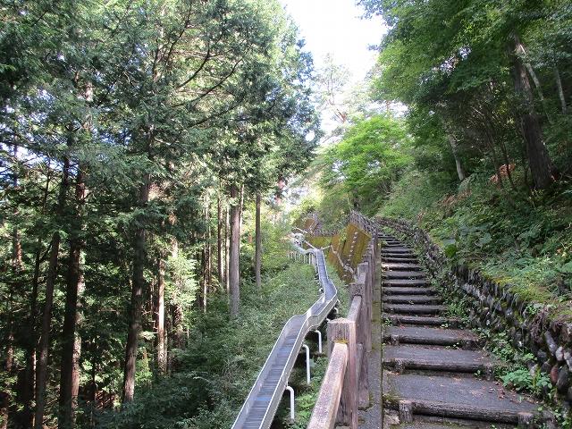 ローラーすべり台と階段