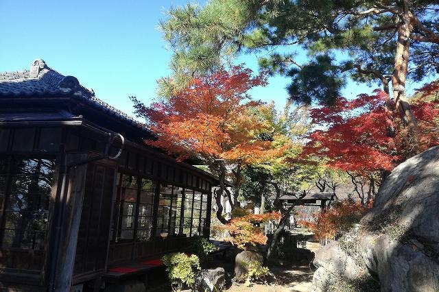 秋の不老園内の様子