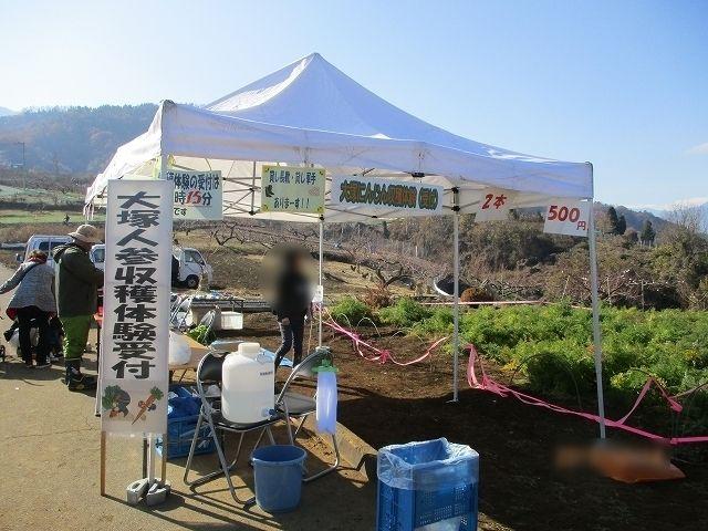 大塚にんじん収穫体験受付テント