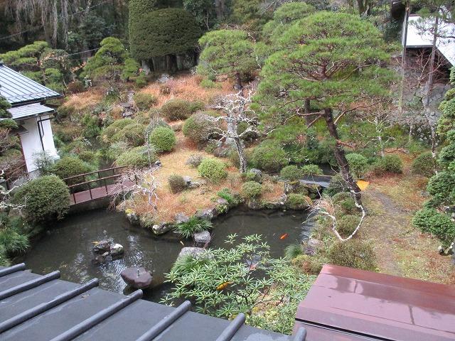 覚林坊の部屋から見える池
